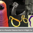 parasite-cleanse